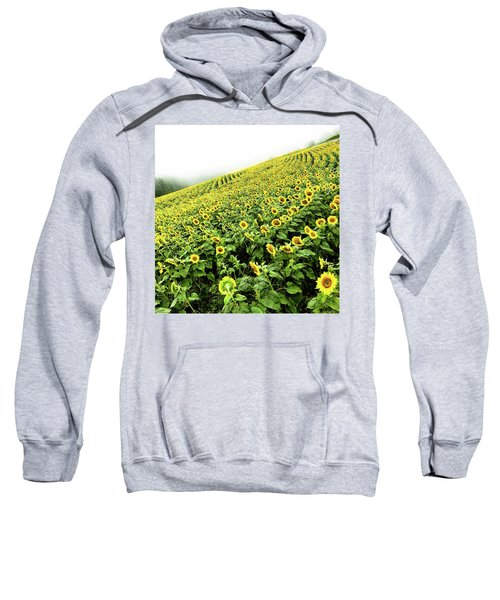 Fields Of Yellow Sweatshirt