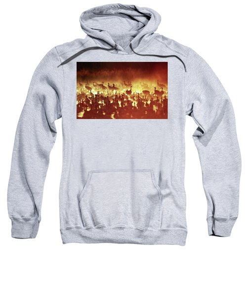 Fire Mist Sans Flight Sweatshirt