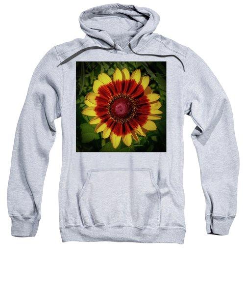 Firewheel Sweatshirt