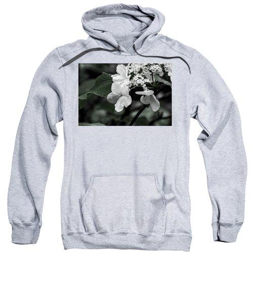Flower And Rain Drops  8645 Sweatshirt