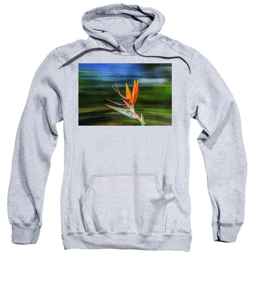 Flying Bird Of Paradise Sweatshirt