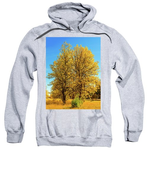 Foliage Sweatshirt