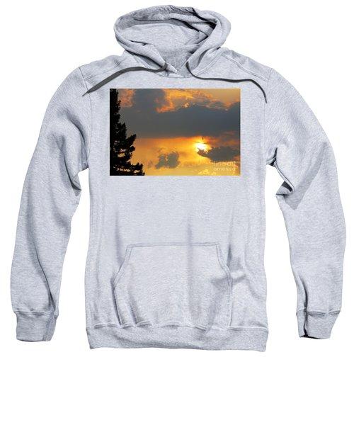 Forest Grove Solar Storm Sweatshirt