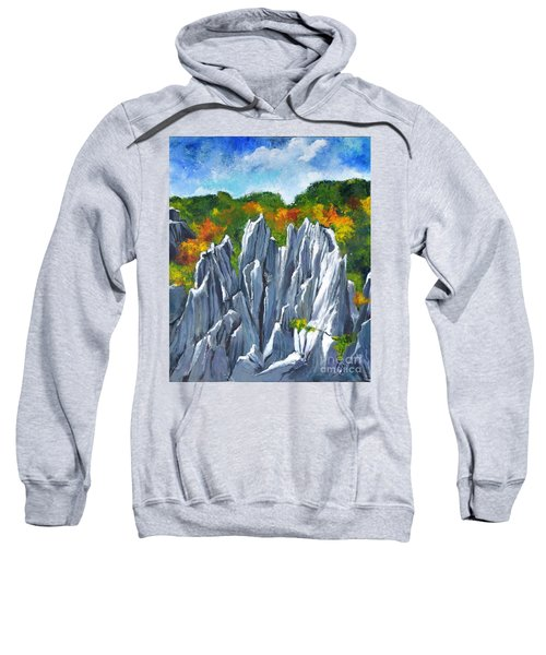 Forest Of Stones Sweatshirt