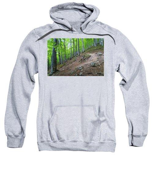 Forest On Balkan Mountain, Bulgaria Sweatshirt