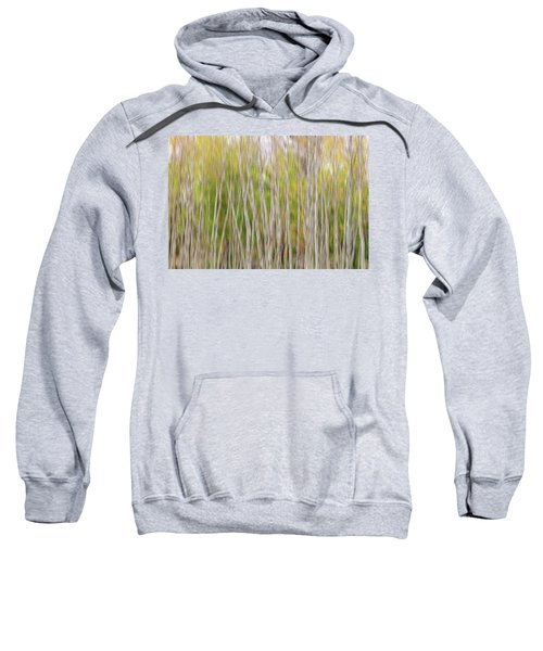 Sweatshirt featuring the photograph Forest Twist And Turns In Motion by James BO Insogna