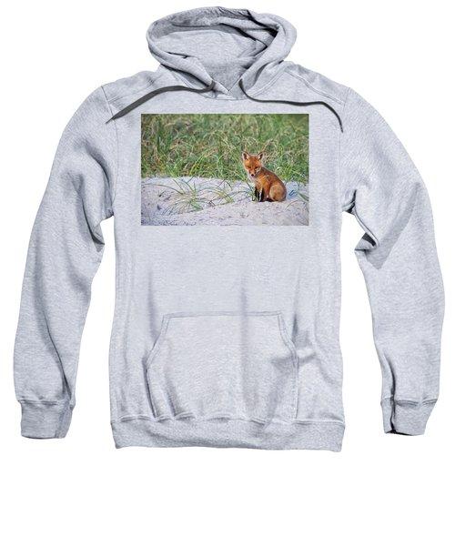 Fox Kit Sweatshirt