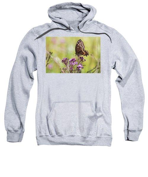 Fragile Wings Sweatshirt