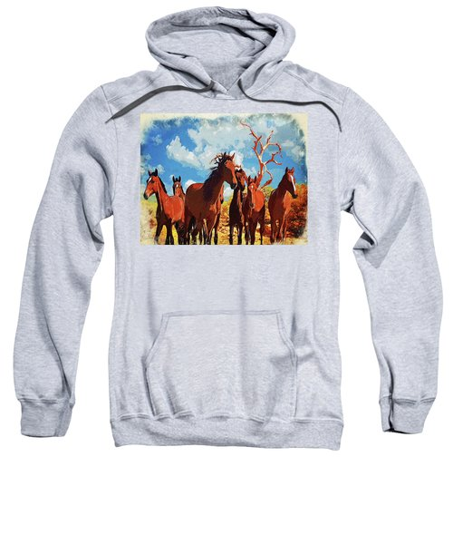 Free Spirits Sweatshirt