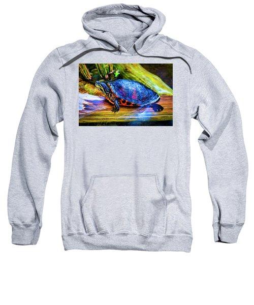 Freshwater Aquatic Turtle Sweatshirt