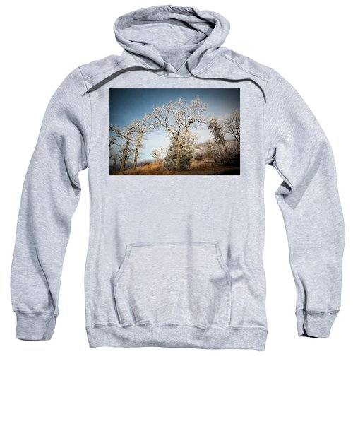 Frost On The Mountain Sweatshirt