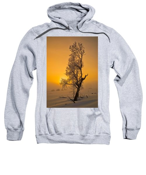Frosted Tree Sweatshirt