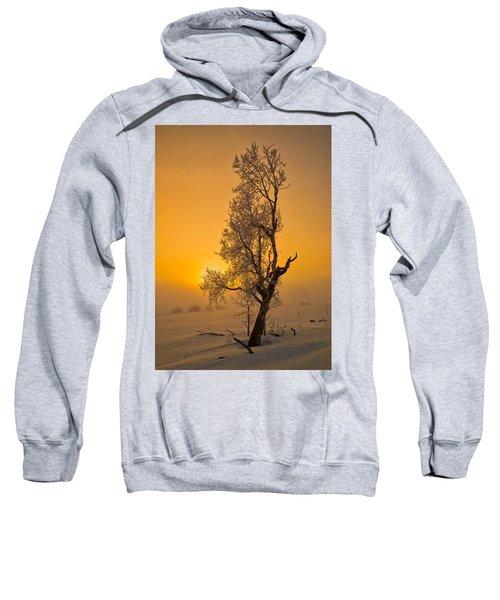 Frosted Tree Sweatshirt