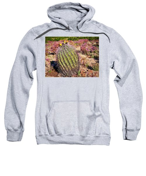 Fruit-bearing Barrel Cactus In Desert Rhubarb Sweatshirt