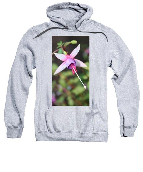 Fuchsia Showing Off In All Its Glory Sweatshirt