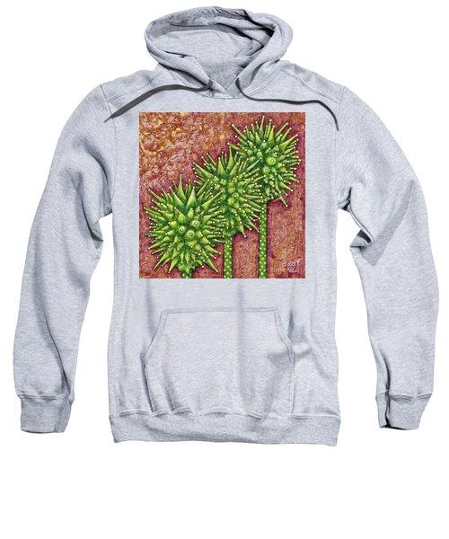 Garden Room 33 Sweatshirt