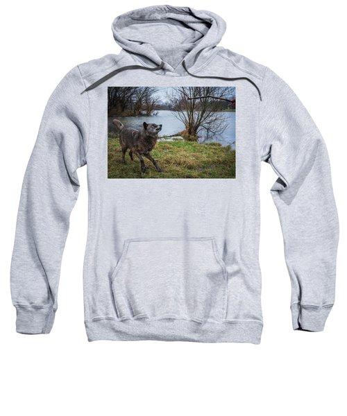 Get The Stick Sweatshirt