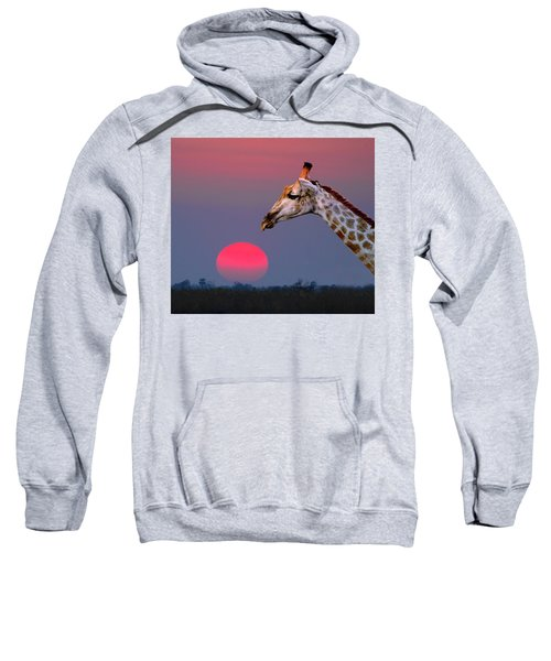 Giraffe Composite Sweatshirt