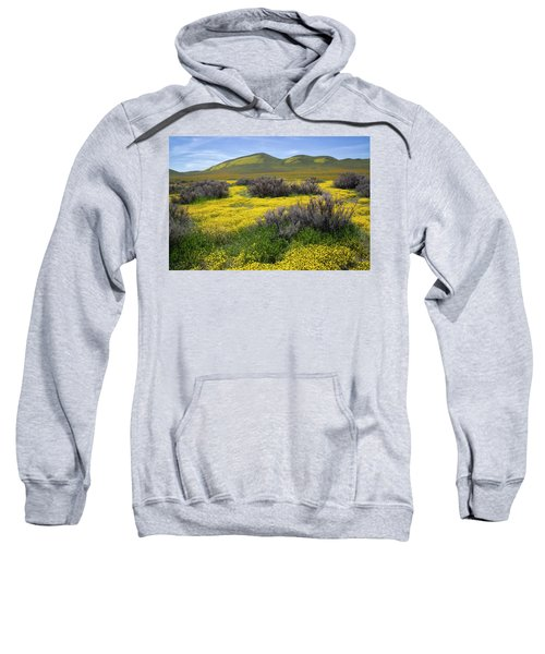 Glorious Color Sweatshirt