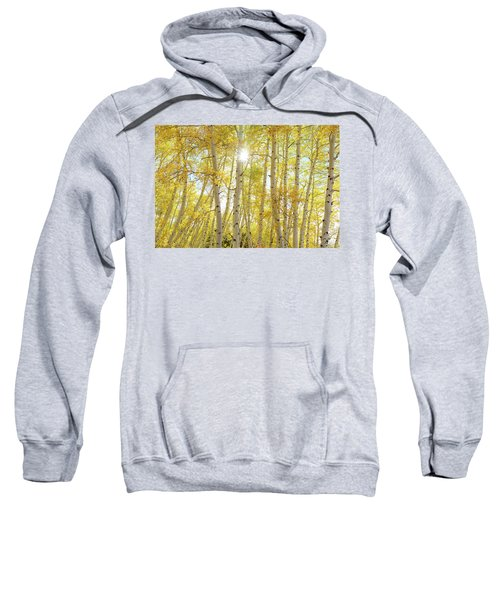 Sweatshirt featuring the photograph Golden Sunshine On An Autumn Day by James BO Insogna