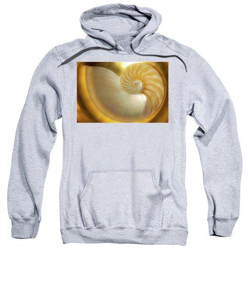 Golden_nautilus_0692 Sweatshirt