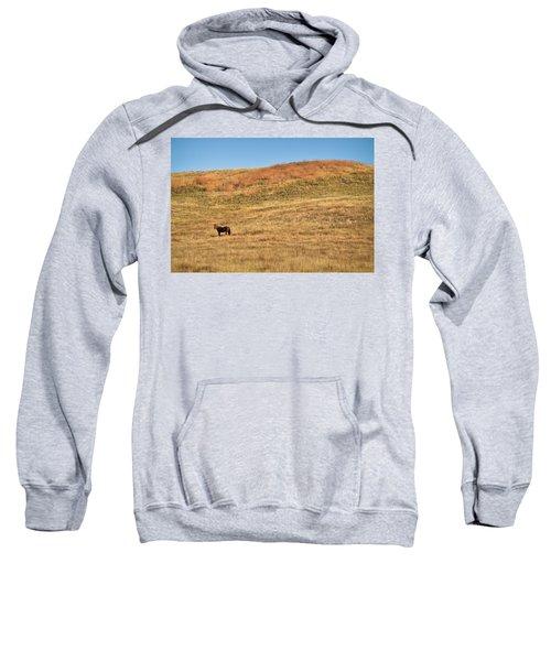 Grazing In The Grass Sweatshirt