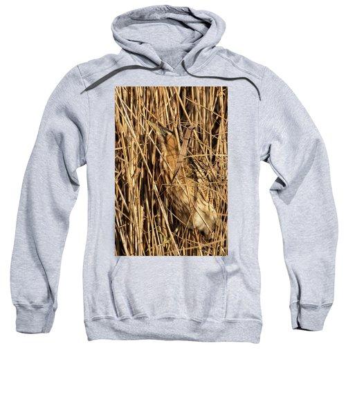 Great Bittern Sweatshirt