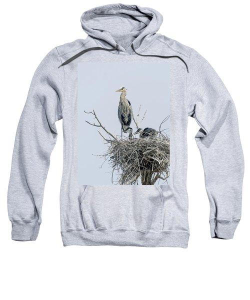 Great Blue Heron Rookery 3 Sweatshirt
