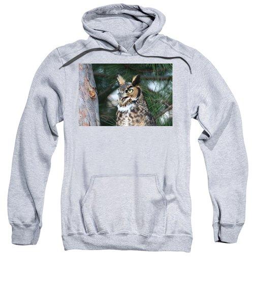 Great Horned Owl 5151801 Sweatshirt