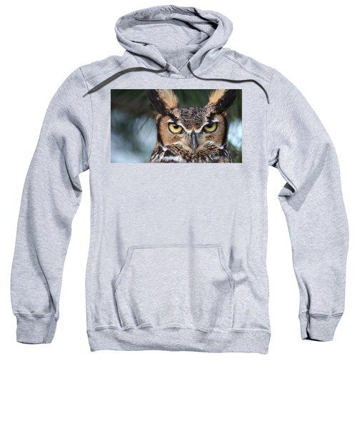 Great Horned Owl Eyes 51518 Sweatshirt