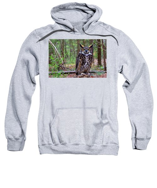 Great Horned Owl Standing On A Tree Log Sweatshirt