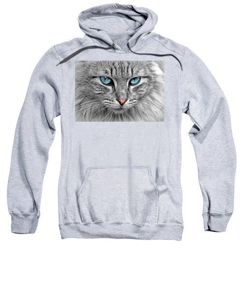 Grey Cat With Blue Eyes Sweatshirt