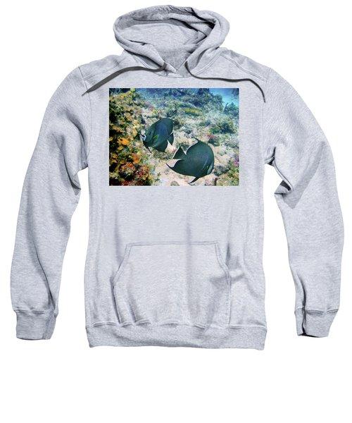 Grey Play Sweatshirt