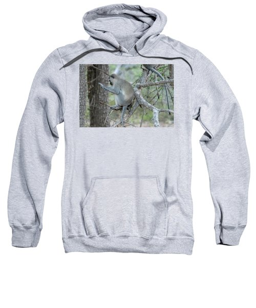 Grooming Or Reading Sweatshirt