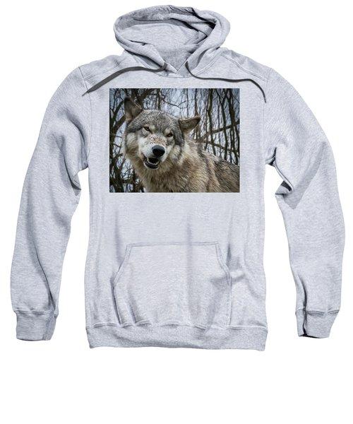 Grrrrrrrr Sweatshirt