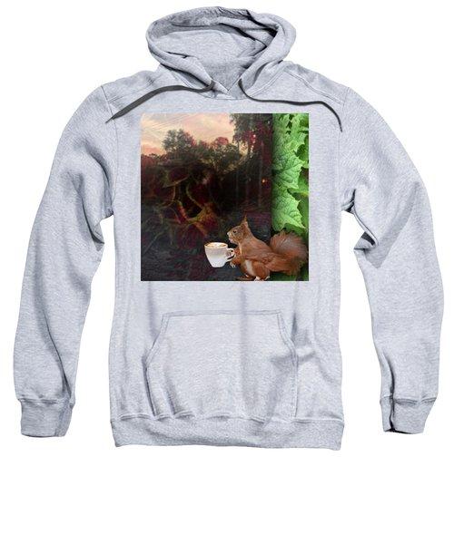 Habiscuis Coffee Sky Sweatshirt