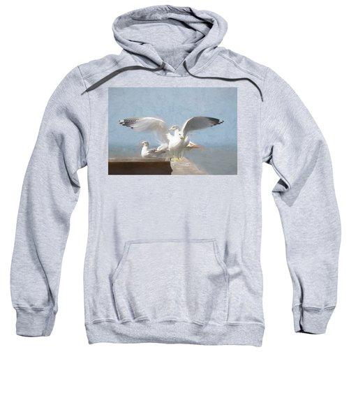 Harbour Watch Sweatshirt