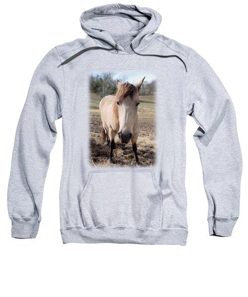Here's Looking At You Kid Sweatshirt