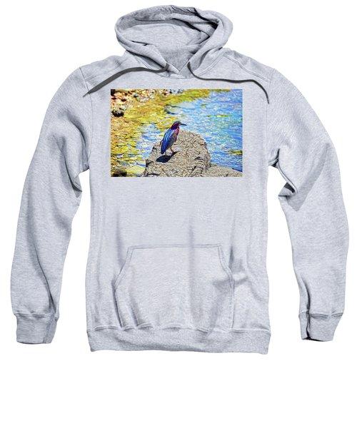 Heron Bluff Sweatshirt
