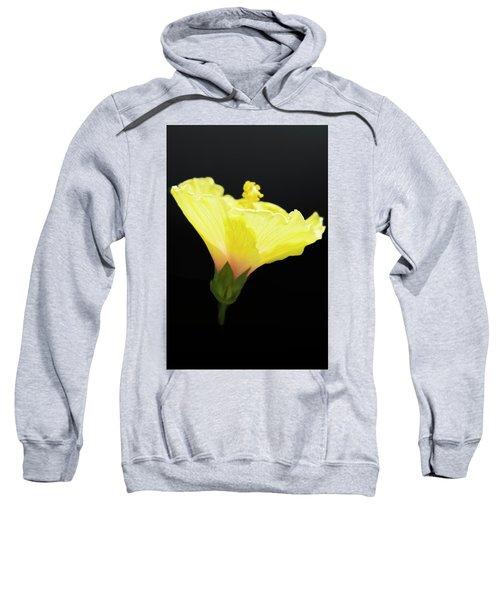 Hibiscus In Black Sweatshirt
