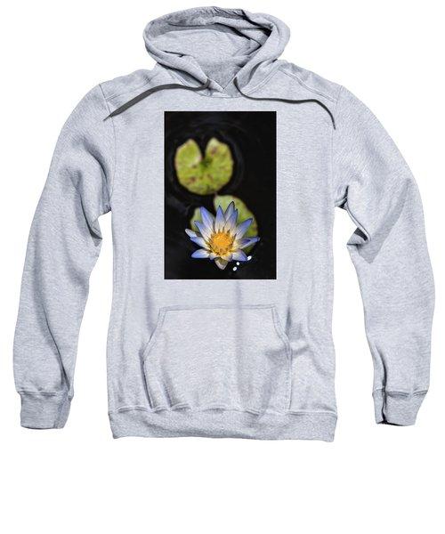 Hidden Jewel Sweatshirt
