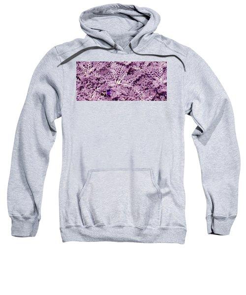 Hide-n-seek Sweatshirt