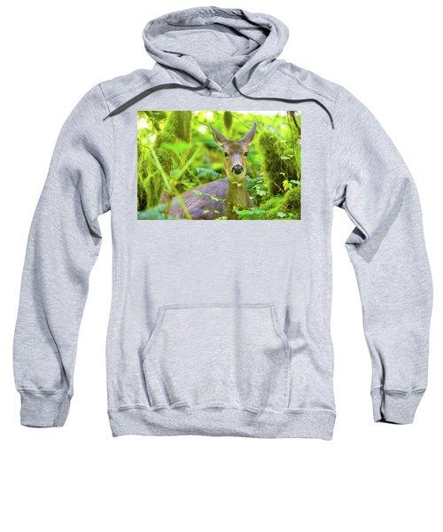 Hiding Deer Sweatshirt