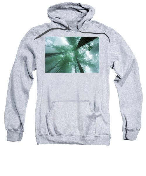 Sweatshirt featuring the photograph High In The Mist by Evgeni Dinev