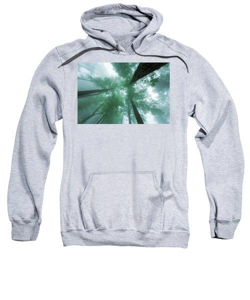 High In The Mist Sweatshirt