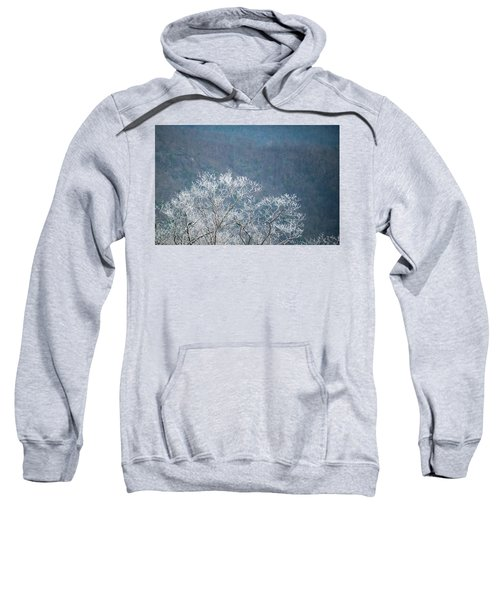 Hoarfrost Collects On Branches Sweatshirt