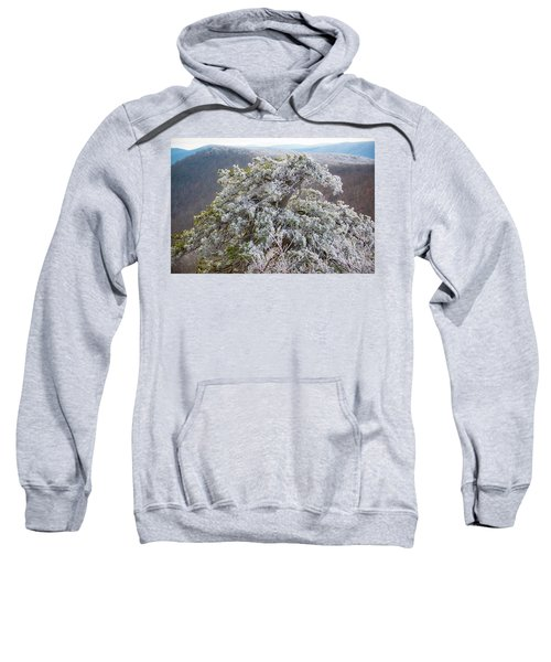 Hoarfrost On Trees Sweatshirt