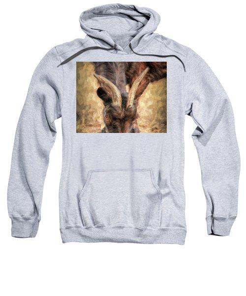 Horns Authority Sweatshirt