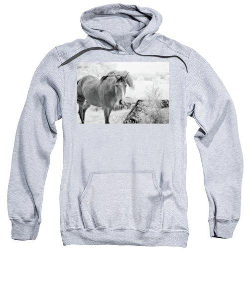 Horse In Infrared Sweatshirt