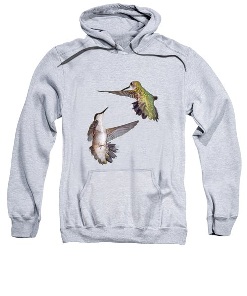 Hummingbirds - Defensive Dance Sweatshirt